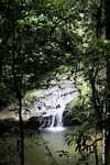 Waterfall in the Bornean rainforest -- borneo_3801