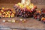 Oil palm fruit -- borneo_4510