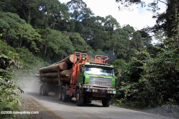 Logging truck in Borneo. Photo by: Rhett A. Butler.