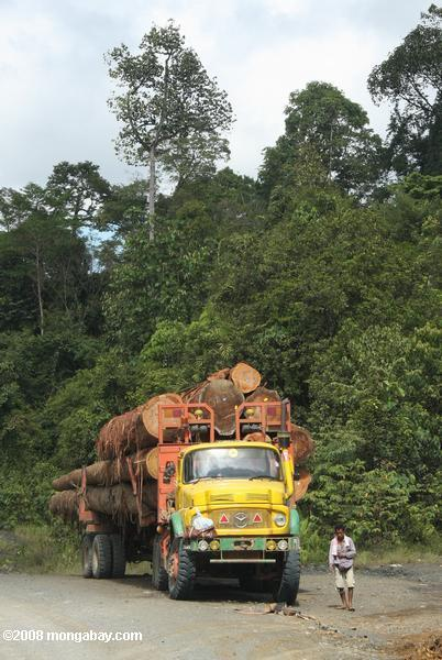 Logging truck carrying timber out of the Malaysian rainforest -- borneo_2934