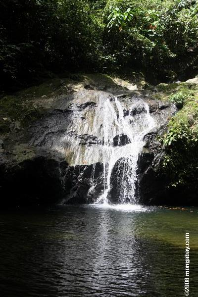Waterfall in the Bornean rainforest