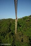 Smithsonian Tropical Research Institute (STRI) Canopy Crane