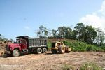Heavy moving equipment preparing to clear forest in Panama
