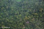 Aerial view of tropical rainforest in Bocas del Toro