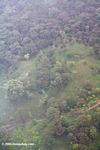 Overhead view of Land clearing on Bocas del Toro