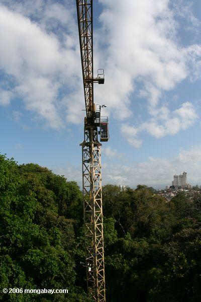 Smithsonian Tropical Research Institute uses a construction crane to conduct tropical forest research in Panama