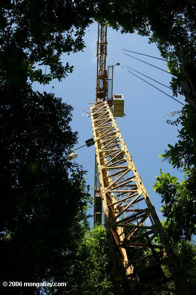 The Smithsonian Tropical Research Institute uses a construction crane to study Panama's tropical forest canopy