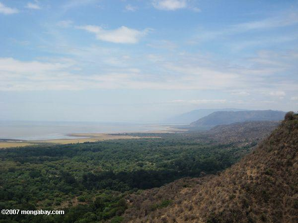 Rift Valley escarpment with the forest of Lake Manyara National Park below in the East African country of Tanzania. Photo by: Rhett A. Butler.