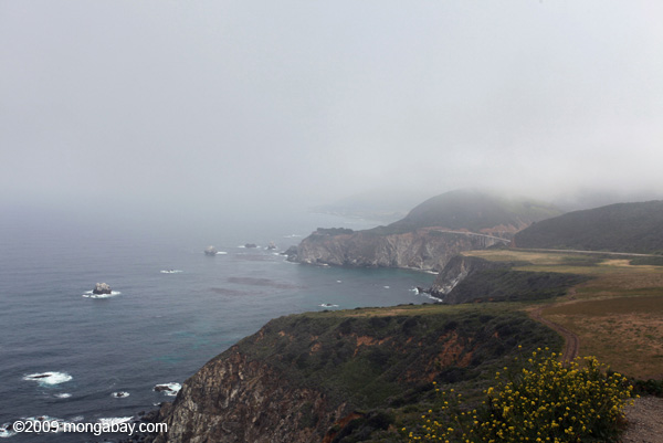 Big Sur coastline near Bixby Bridge