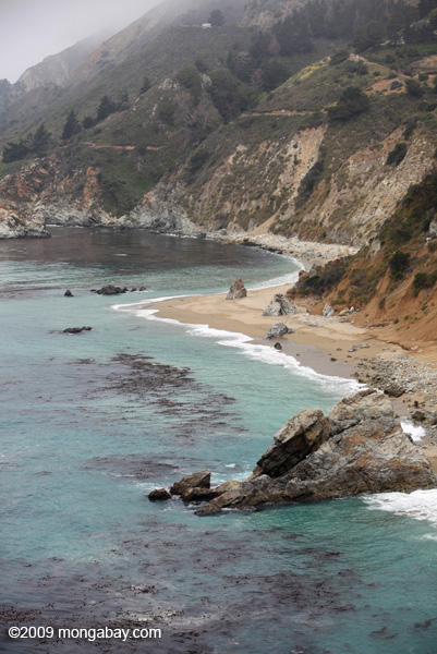 Coastline north of McWay Cove in Julia Pfeiffer Burns State Park, Big Sur, California