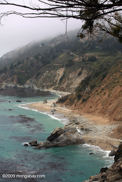 Beach north of McWay Cove in Big Sur
