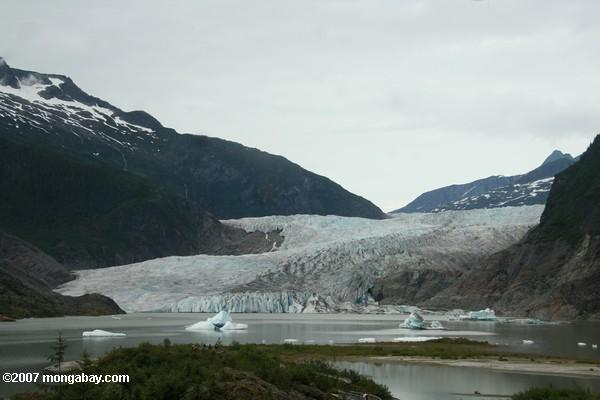 Base of Mendenhall glacier