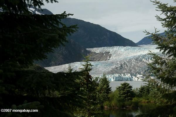 Foot of the Mendenhall Glacier