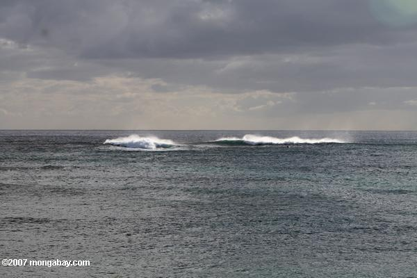 Waves in the Pacific